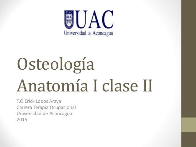 Osteología Anatomía I clase II T.O Erick Lobos Araya Carrera Terapia Ocupacional Universidad de Aconcagua 2015