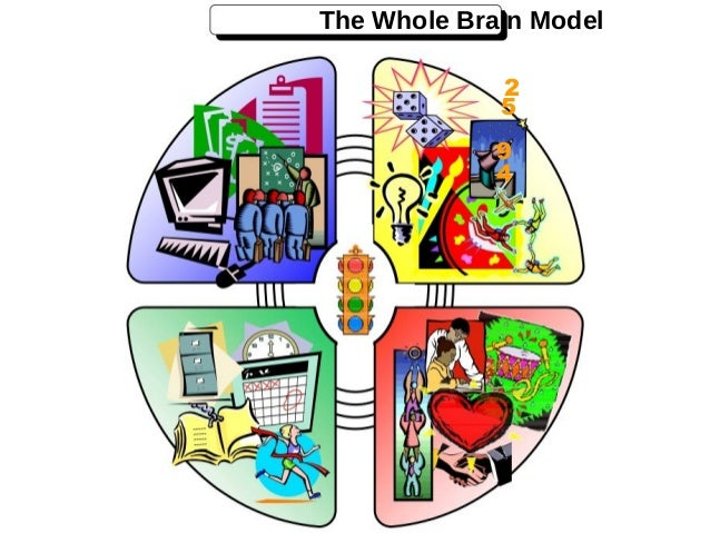 learning style and brain dominance The basis of whole brain® thinking and all herrmann international learning  once an individual understands his or her thinking style  brain dominance.