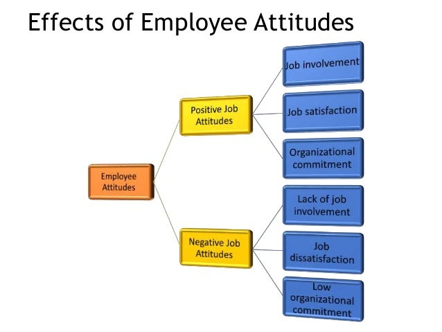 values attitudes and job satisfaction organizational behavior Of employee attitudes and job satisfaction as emotion, in defining job satisfaction and how employee attitudes influence organizational.