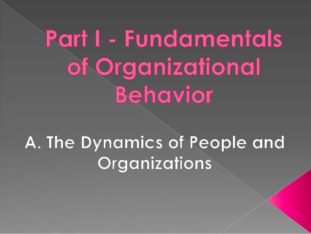 systematic study of organizational behavior Organizational behavior is the study of both group and individual performance and activity within an organization internal and external perspectives are two theories of how organizational.
