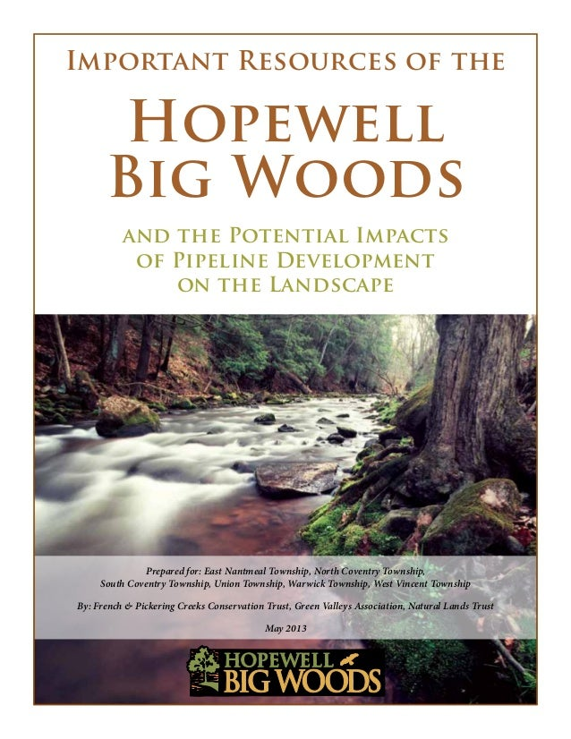 Important Resources of theHopewellBig Woodsand the Potential Impactsof Pipeline Developmenton the LandscapePrepared for: E...