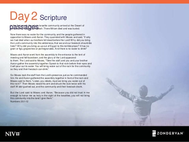 Recovery insights from bible personalities 5 day2 scripture passagesin the fandeluxe Choice Image