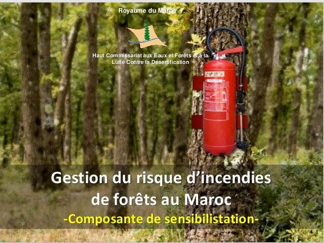 Gestion du risque d'incendies de forêts au Maroc -Composante de sensibilistation- Royaume du Maroc Haut Commissariat aux E...