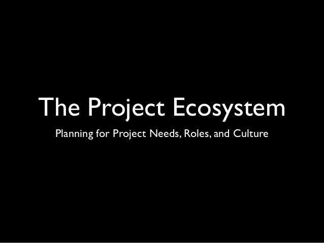 The Project Ecosystem Planning for Project Needs, Roles, and Culture