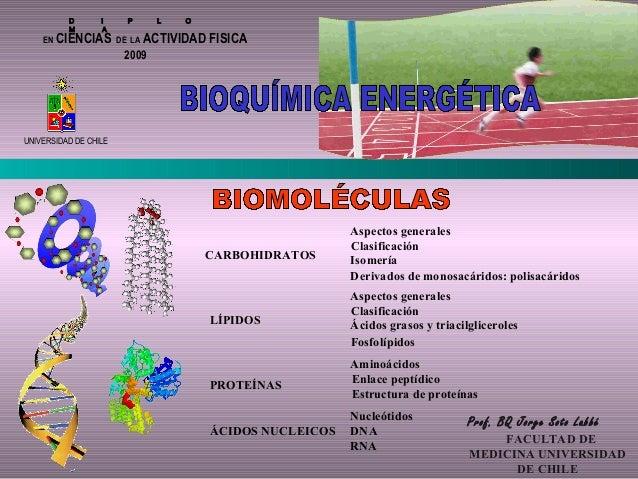 D I P L O M A EN CIENCIAS DE LA ACTIVIDAD FISICA UNIVERSIDAD DE CHILE Prof. BQ Jorge Soto Labbé FACULTAD DE MEDICINA UNIVE...