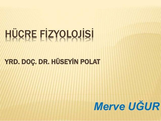 HÜCRE FİZYOLOJİSİ YRD. DOÇ. DR. HÜSEYİN POLAT Merve UĞUR