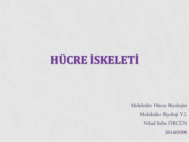 HÜCRE İSKELETİ Moleküler Hücre Biyolojisi Moleküler Biyoloji Y.L Nihal Selin ÖRCÜN 501403006