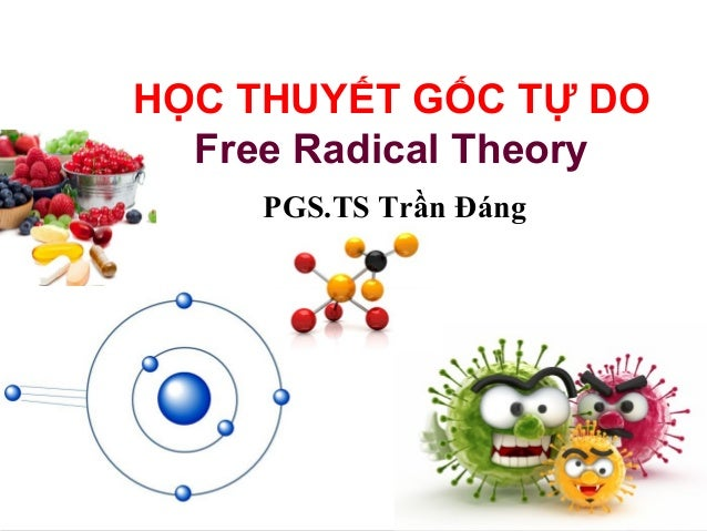 L/O/G/O  HỌC THUYẾT GỐC TỰ DO  www.trungtamtinhoc.edu.vn  Free Radical Theory  PGS.TS Trần Đáng