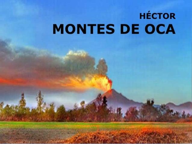 Héctor Montes de Oca