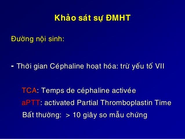 Rối loạn đông máu huyết thanh TQ (TP) TCA ĐM ngoại sinh (VII) ↑ ┴ ĐM nội sinh (XII,XI,IX,VIII) ┴ ↑ ĐM chung (X, V, II...