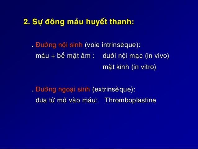 SÔ ÑOÀ ÑÔN GIAÛN HOÙA SÖÏ ÑMHT XII XIIA XI XIA IX IXA VIII PL Ca++ XA V PL Ca++ Thrombine Fibrine XIII XIIIA X Fibrinogen ...