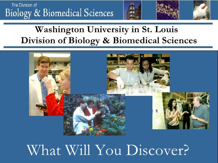 Washington University in St. LouisDivision of Biology & Biomedical Sciences What Will You Discover?