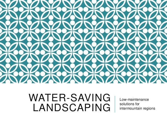 WATER-SAVING LANDSCAPING  Low-maintenance solutions for intermountain regions