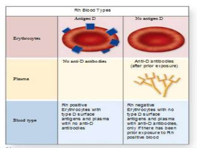 hemolytic disease of the newborn pdf