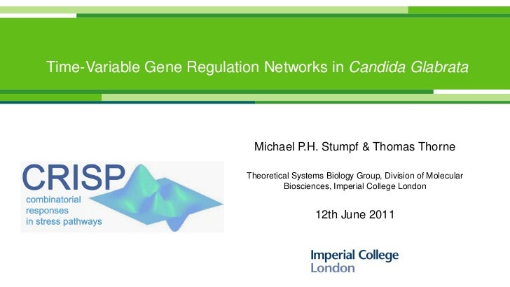 Time-Variable Gene Regulation Networks in Candida Glabrata                             Michael P.H. Stumpf & Thomas Thorne...