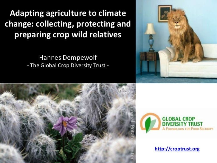 Adapting agriculture to climatechange: collecting, protecting and  preparing crop wild relatives           Hannes Dempewol...