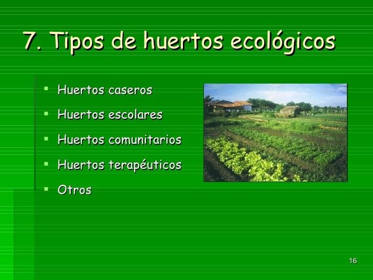 Lecci n 1 introducci n al huerto ecol ico for Que es un huerto escolar
