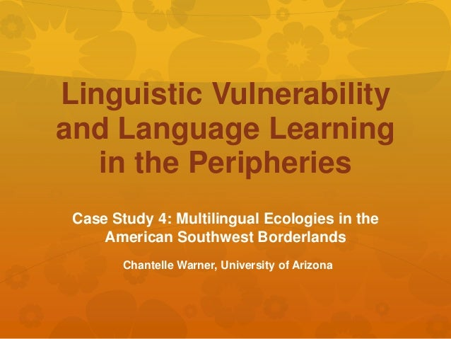 Linguistic Vulnerability and Language Learning in the Peripheries Case Study 4: Multilingual Ecologies in the American Sou...