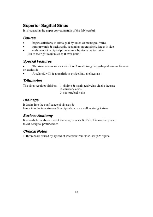 Complete Summary Of the Head and Neck Anatomy