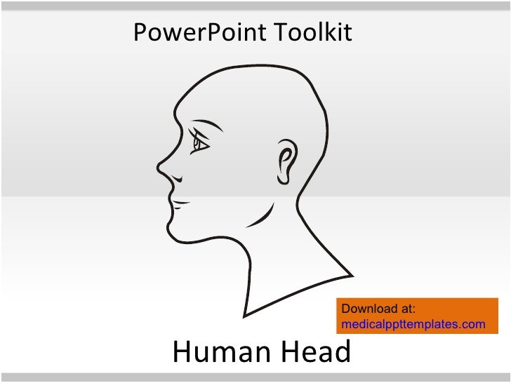 Human anatomy toolkit human anatomy powerpoint template for Anatomy ppt templates free download