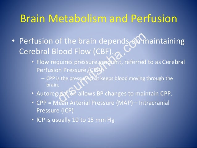 Brain Metabolism and Perfusion • Perfusion of the brain depends on maintaining Cerebral Blood Flow (CBF). • Flow requires ...