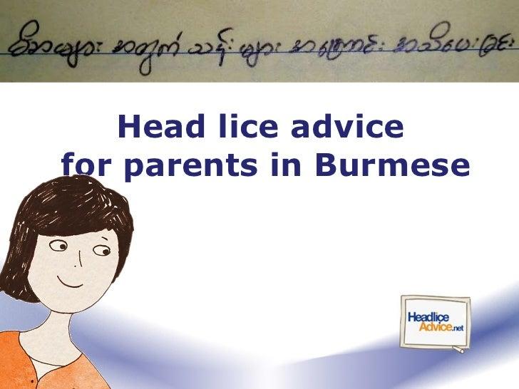 Head lice advice  for parents in Burmese