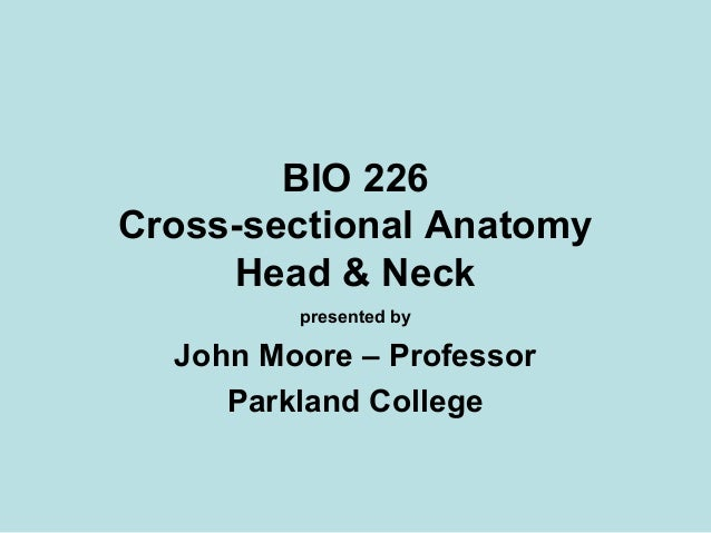 BIO 226 Cross-sectional Anatomy Head & Neck presented by John Moore – Professor Parkland College