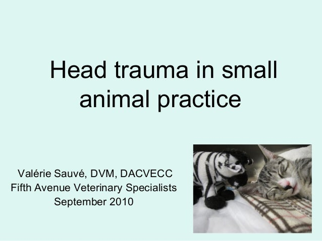 Head trauma in small animal practice Valérie Sauvé, DVM, DACVECC Fifth Avenue Veterinary Specialists September 2010