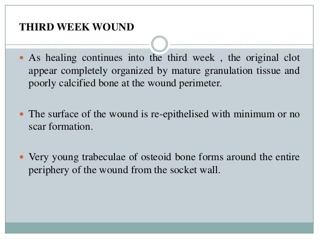 healing of oral wounds pdf