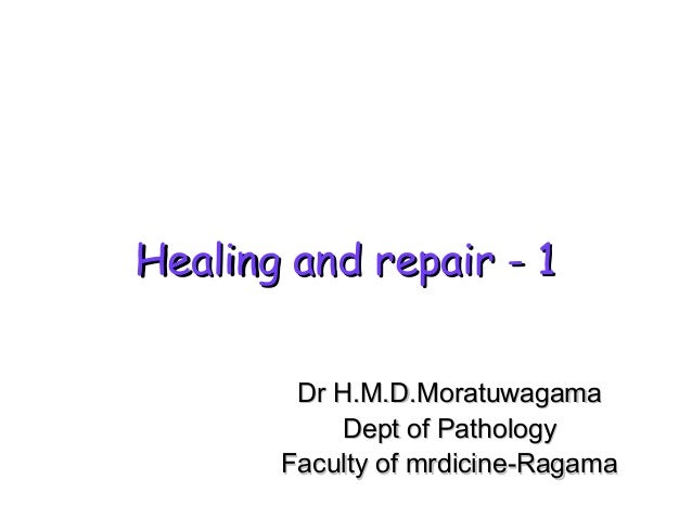 Healing and repair - 1 Dr H.M.D.Moratuwagama Dept of Pathology Faculty of mrdicine-Ragama