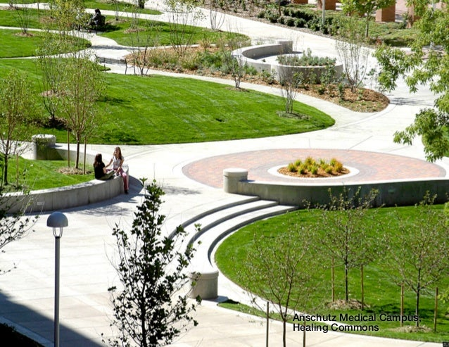 The Power of Healing Gardens