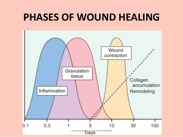 Healing of wound