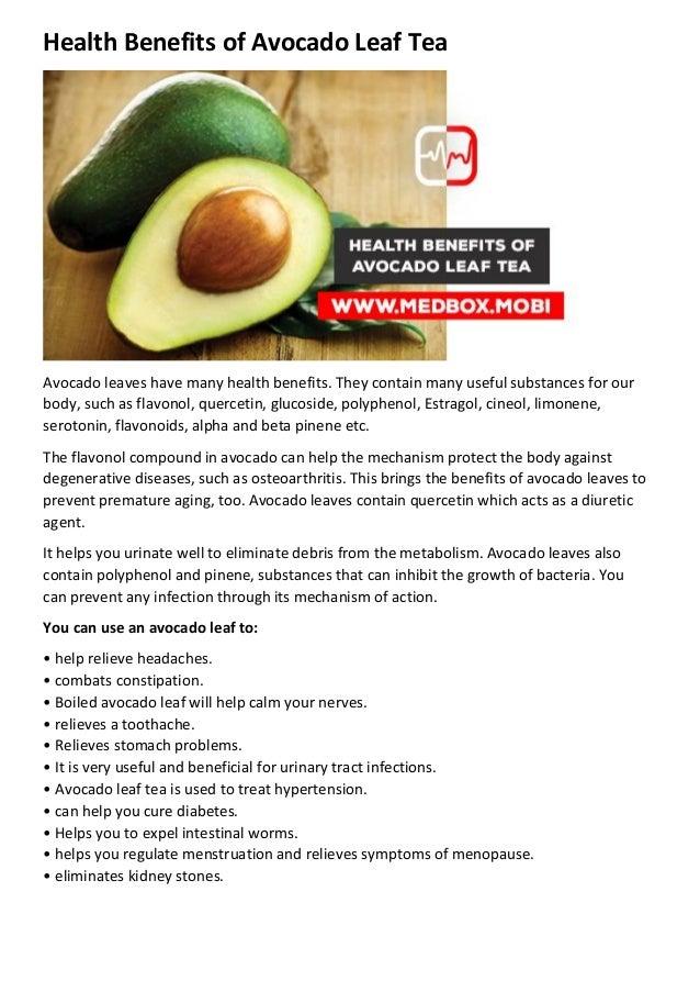 how to make avocado leaves tea