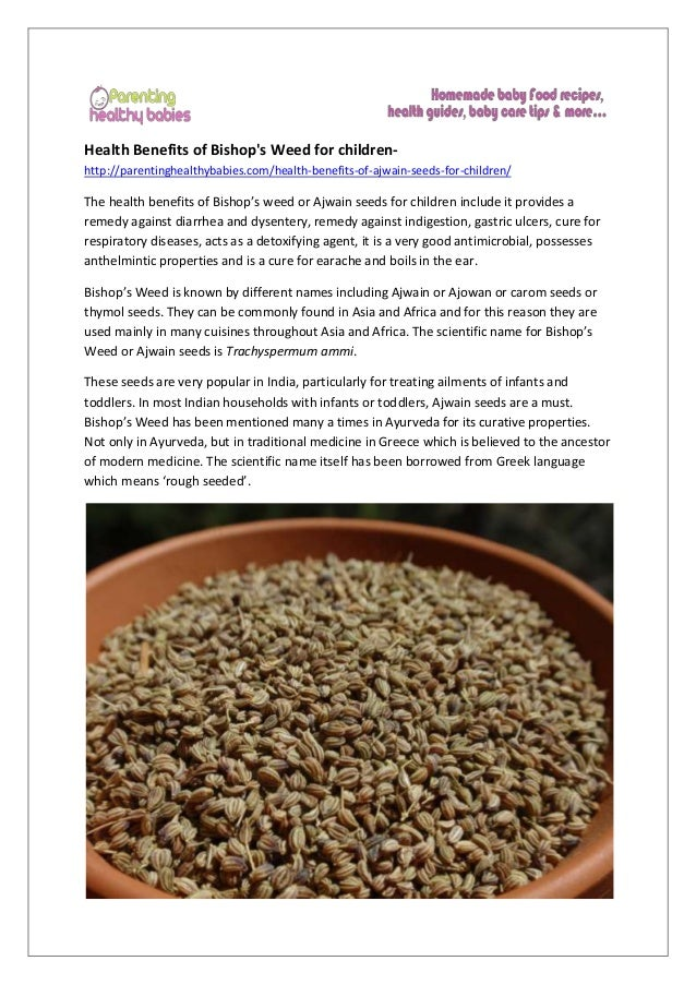 Health Benefits of Bishop's Weed for children- http://parentinghealthybabies.com/health-benefits-of-ajwain-seeds-for-child...