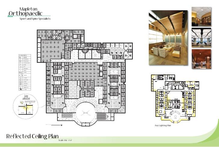 Mapleton Orthopaedics Healthcare Design - Art Gallery Floor Plans