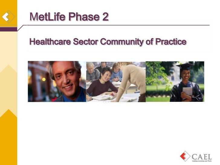 MetLife Phase 2Healthcare Sector Community of Practice
