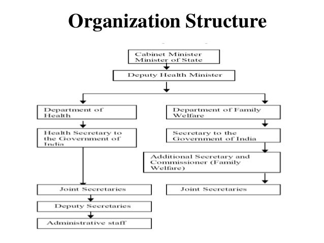 Organizational Chart For Health Care Facility: Healthcare delivery system in india,Chart