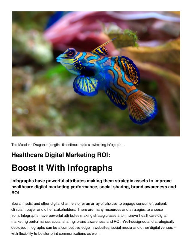 The Mandarin Dragonet (length: 6 centimeters) is a swimming infograph… Healthcare Digital Marketing ROI: Boost It With Inf...