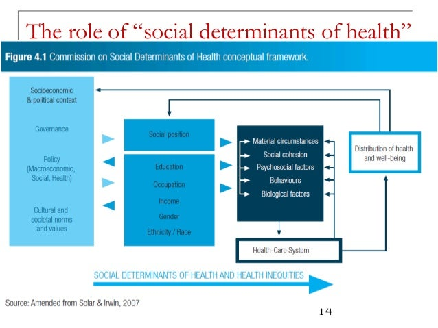 Gender Differences in Determinants and Consequences of Health and Illness