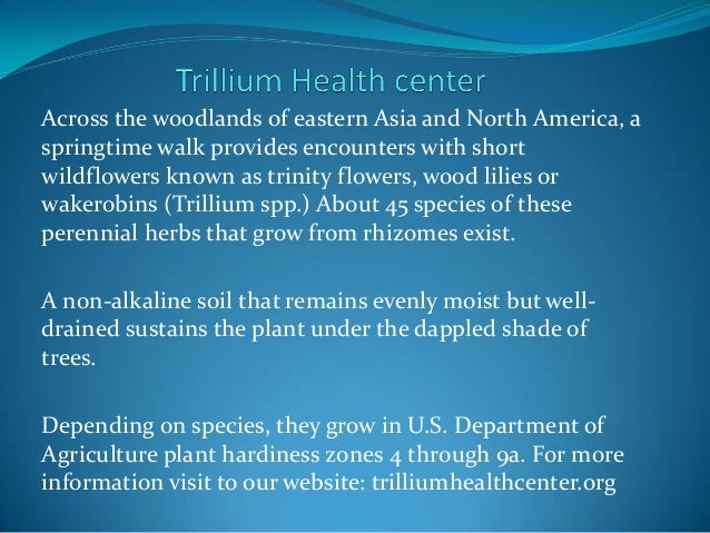 Across the woodlands of eastern Asia and North America, a springtime walk provides encounters with short wildflowers known...