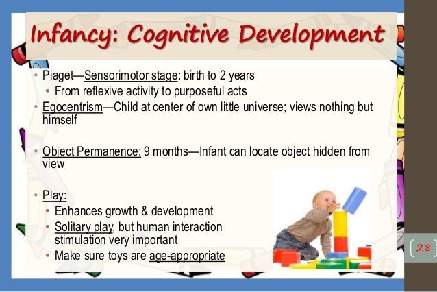 Health promotion of the infant & toddler