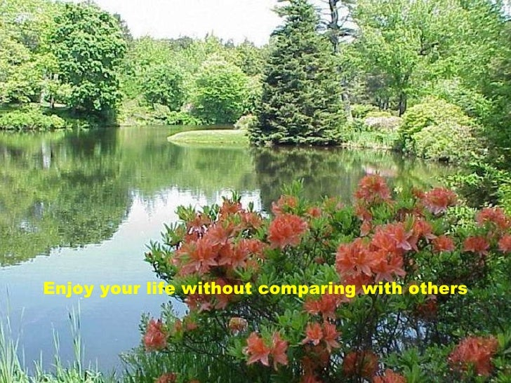 Enjoy your life without comparing with others