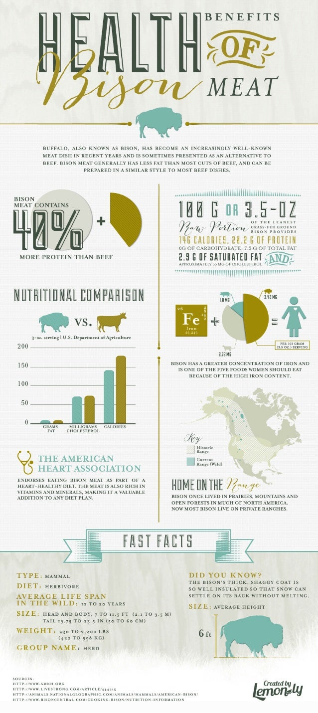 Health Benefits of Bison Meat Infographic - Lemonly