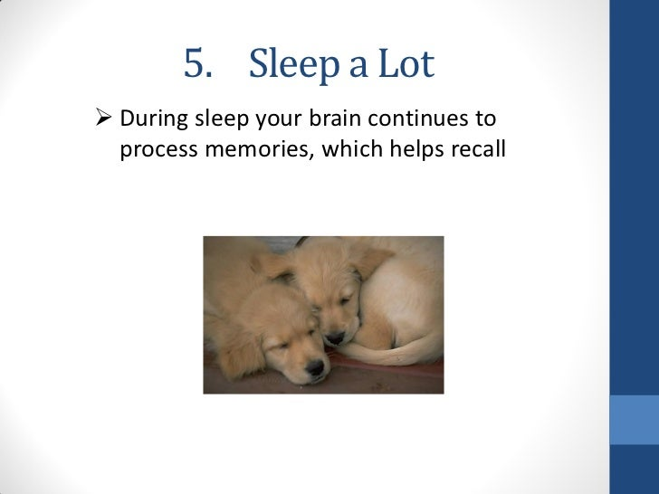 5. Sleep a Lot During sleep your brain continues to  process memories, which helps recall