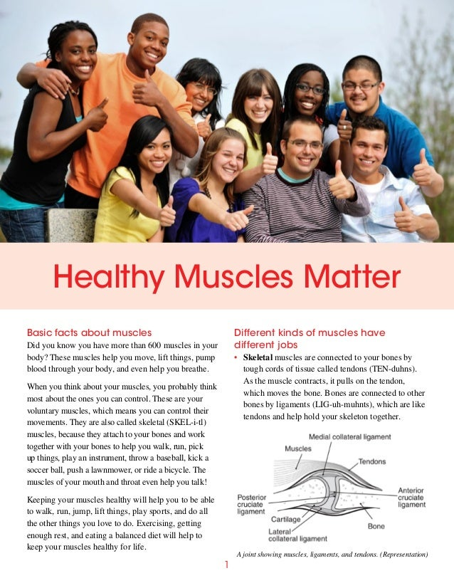 Healthy Muscles Matter Basic facts about muscles  Different kinds of muscles have different jobs  Did you know you have mo...