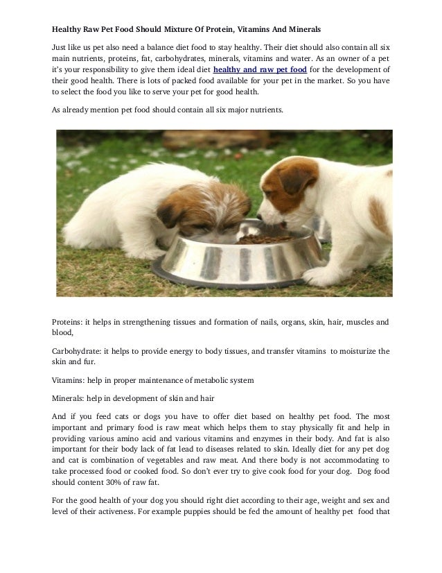 How To Start On Raw Food Diet For Dogs