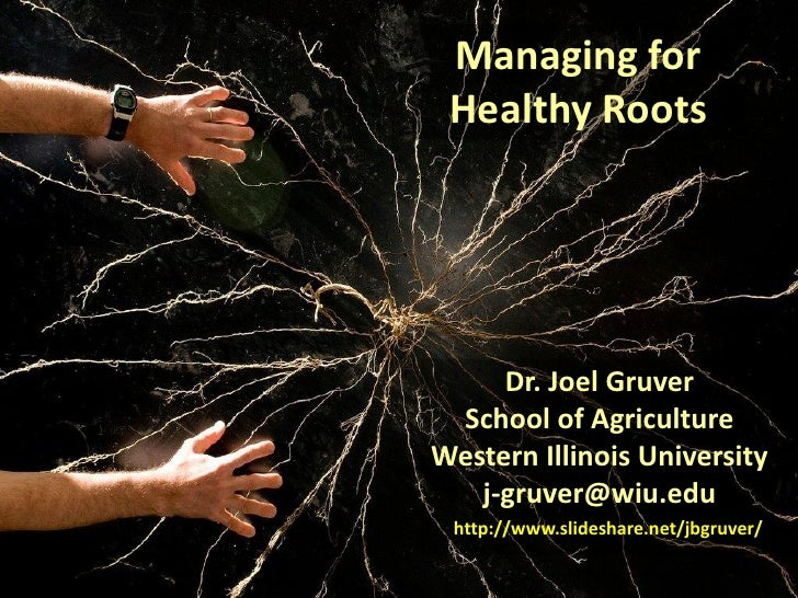 Managing for Healthy Roots     Dr. Joel Gruver School of AgricultureWestern Illinois University   j-gruver@wiu.edu http://...