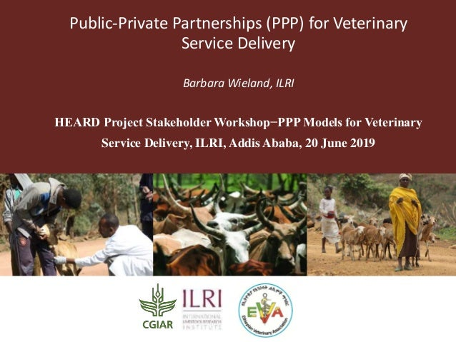 Public-Private Partnerships (PPP) for Veterinary Service Delivery Barbara Wieland, ILRI HEARD Project Stakeholder Workshop...