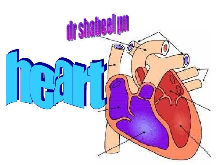 heart dr shabeel pn