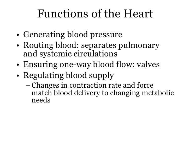 Heart excitation Slide 2